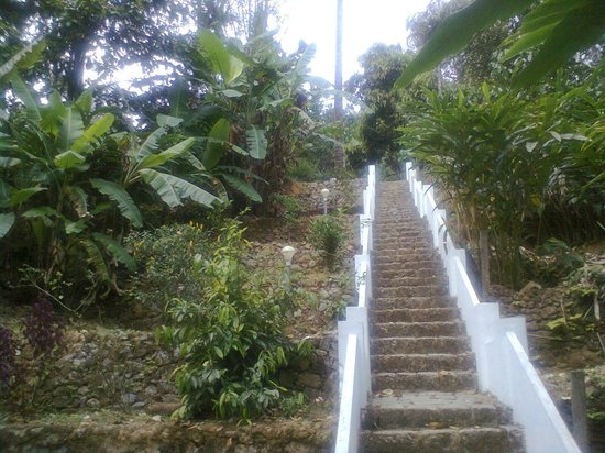 Cool Resort: steps  of stayed our cottage