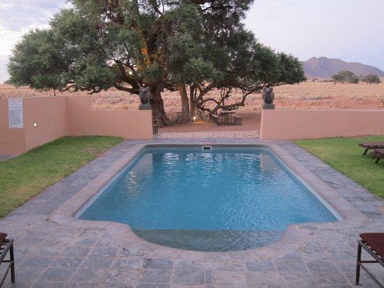 Sossusvlei Lodge : Petite piscine