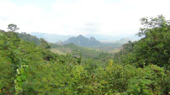 Khao Sok Paradise Resort: Omgeving