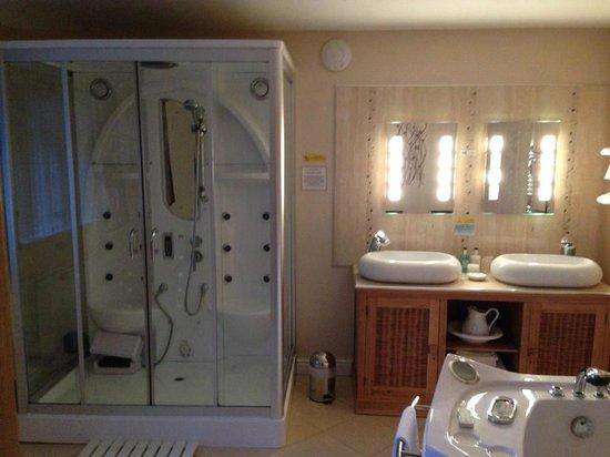 Grovewood House: steam room/shower