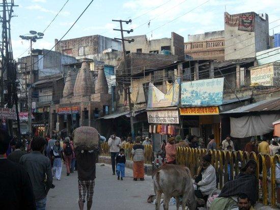 Ram Bhawan Kautilya Society Residence: Local market