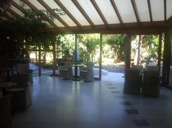 Apollonia Beach Resort & Spa: Patio leading to the first bar
