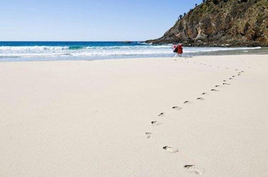 Kangaroo Beach Lodges : Beach with(out) footprints