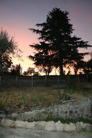 B&B Alla Fonte : tramonto