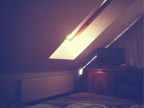 Grotthuss Hotel: Skylights