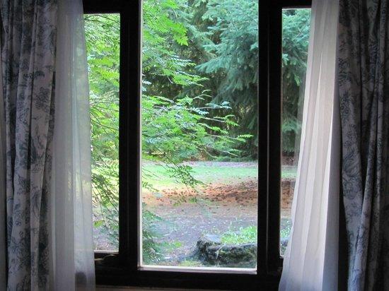 Las Acacias : desde nuestra habitacion