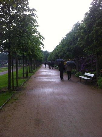 Dorint Park Hotel Bremen: Around the lake