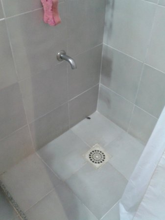Posada del Angel: Cucaracha en la ducha