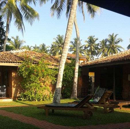 Sri Budhasa Ayurveda Resort : Uitzicht vanuit bungalow