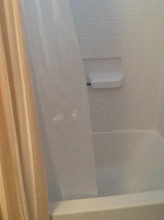Terra Verde Resort: dirty shower curtain main bathroom