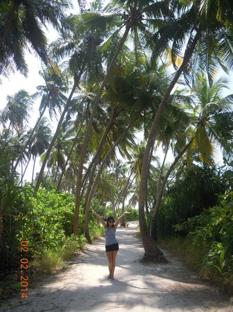 Atoll Beach Inn: road to the beach