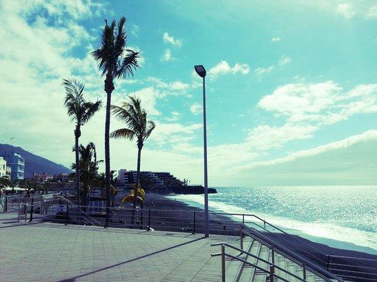 Apartamentos Playa Delphin: una playa preciosa