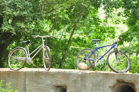 Brook Boutique Hotel & Spa : Bicycle ride to the brook