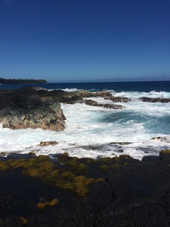 Native Guide Hawaii : Puna Coastline