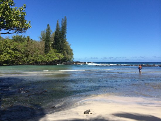 Native Guide Hawaii: Puna Coastline