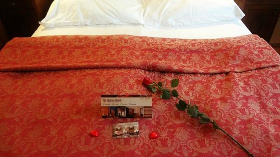 The Charles Hotel: the bed at st. valentine's