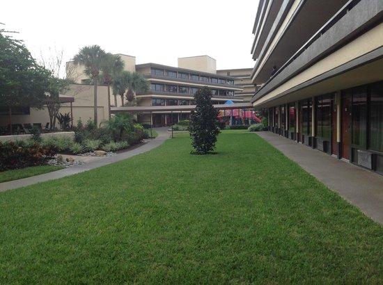 Rosen Inn at Pointe Orlando: Poolside