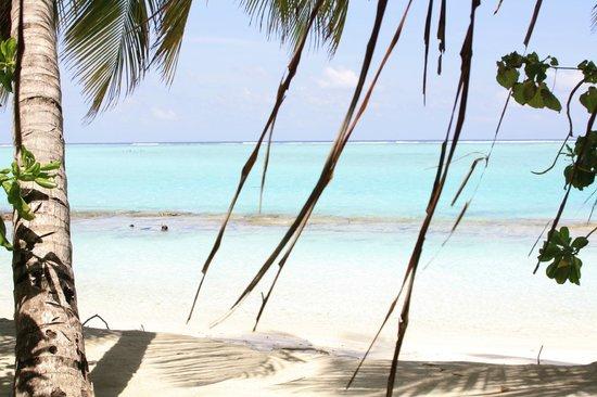 Sun Island Resort and Spa : vue depuis la chambre 508