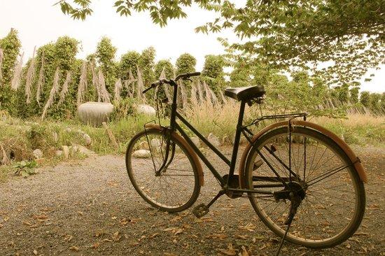 The Vine Retreat: You can borrow a bike