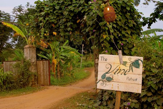The Vine Retreat: The entrance