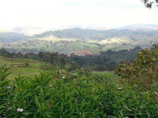 Villa Blanca Cloud Forest Hotel and Nature Reserve: Our View