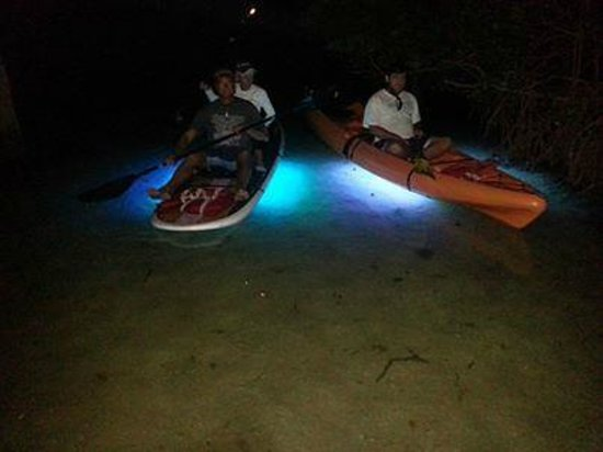 Sarasota Paddleboard Company: illuminated kayak and paddleboard tours