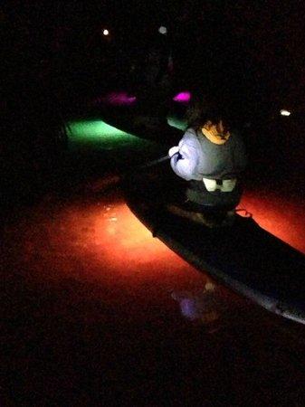 Sarasota Paddleboard Company: Paddling through the mangroves at night