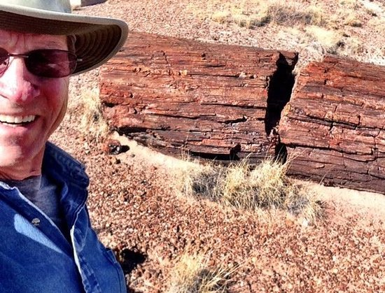 Giant Logs Loop : Terry Hunefeld checks out a petrified tree in the Petrified Forest