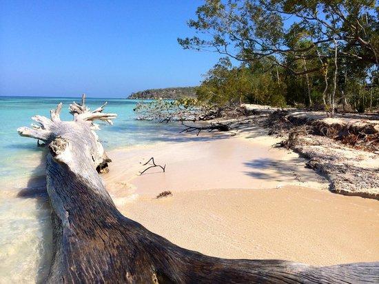 Corales Punta Rusia : Playa, Punta Rucia