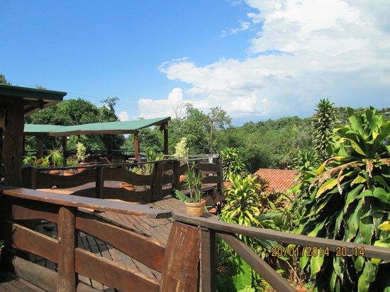 Jasy Hotel: la vue de la piscine