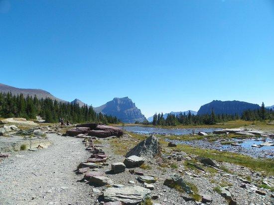 Logan Pass: Beautiful area