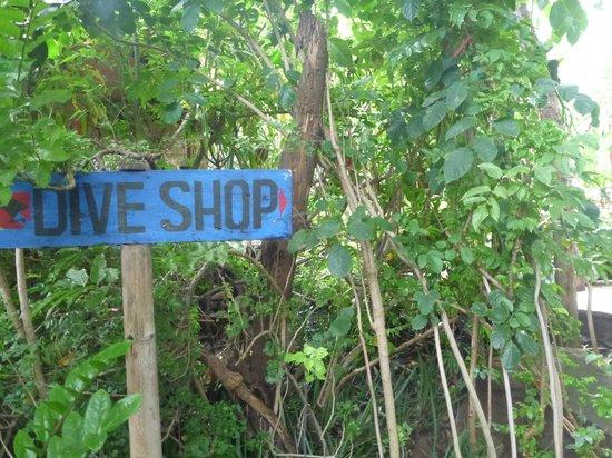 Geria Giri Shanti Bungalows: Way to the Dive Shop!