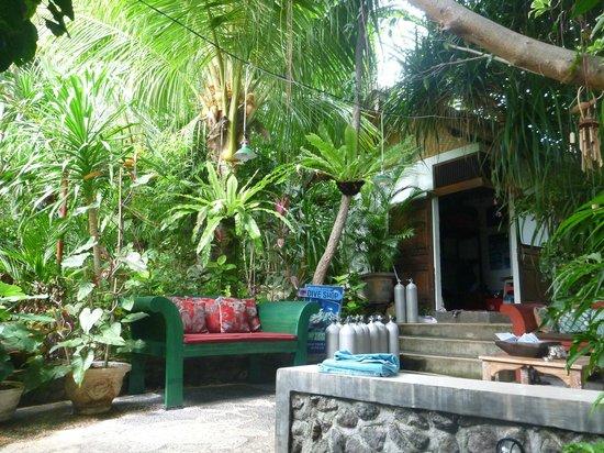 Geria Giri Shanti Bungalows: Beautiful place to relax after diving.
