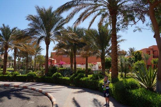 Jaz Makadi Oasis Resort and Club: Мадинат Макади