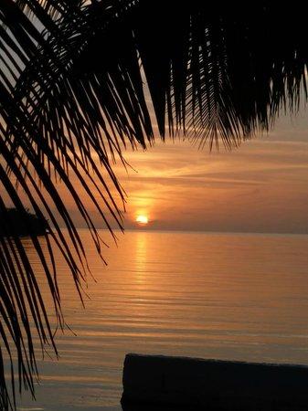 Gorgeous sunset at Lime Tree Bay Resort