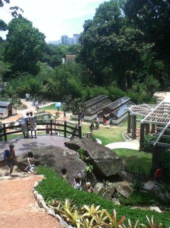 Botanical Garden (Jardim Botanico): Lindos miradores