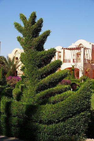 Jaz Makadi Oasis Resort and Club: Iberotel Makadi Beach