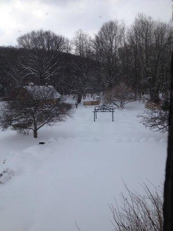Settlers Inn: Snow