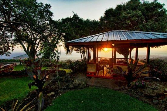Holualoa Inn: Stunning ocean views