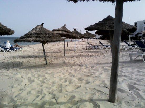 Marhaba Palace Hotel : hotel beach 30sec walk