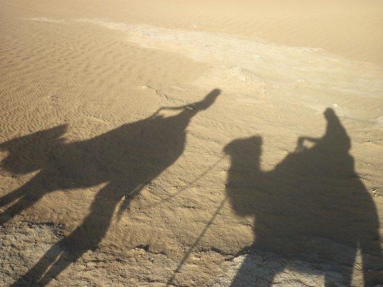 Petit Prince sur les sables : .