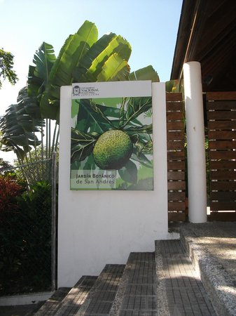 Jardin Botanico de San Andres