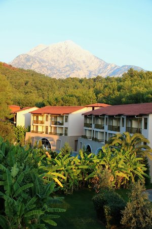 Amara Dolce Vita Luxury: Чудесная территория отеля.