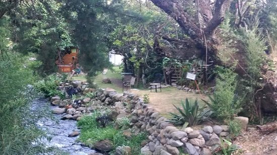 Hostal Garden by Refugio del Rio: backyard seen from the river bridge