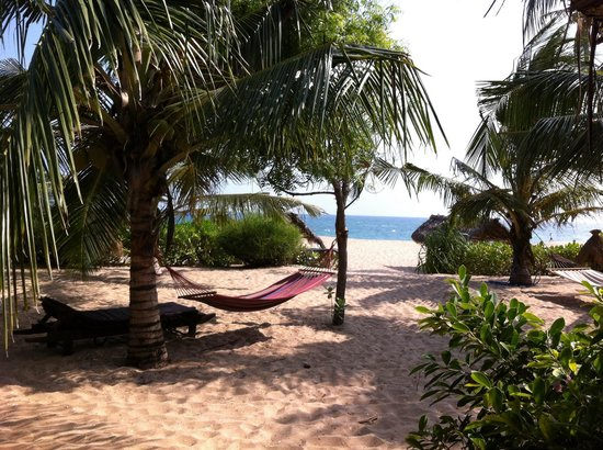 Mangrove Beach Cabanas & Chalets: The view from cabana