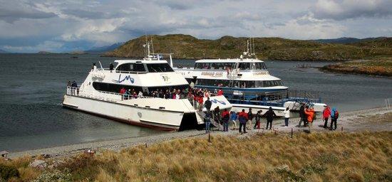 Faro Les Eclaireurs: Notre catamaran