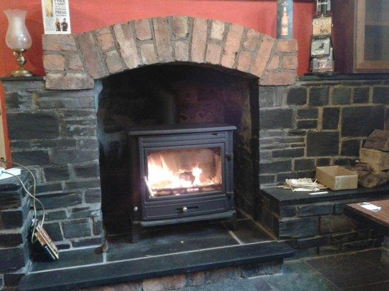 Prince Llewelyn Hotel: Bar Fire