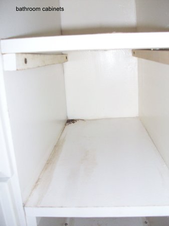Seashell Beach Resort: bathroom cabinet