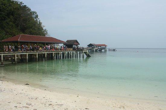 Pulau Payar Marine Park: The jetty