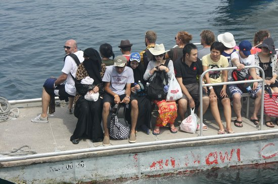 Pulau Payar Marine Park: Too many people. About 1000 people that day.